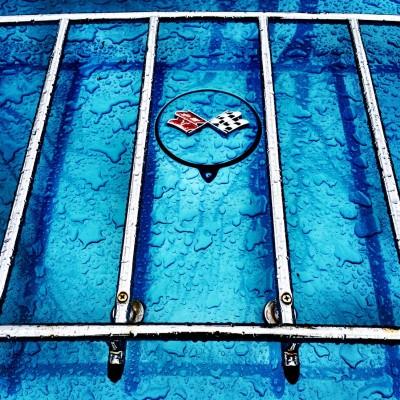 stingray 2 - behind bars